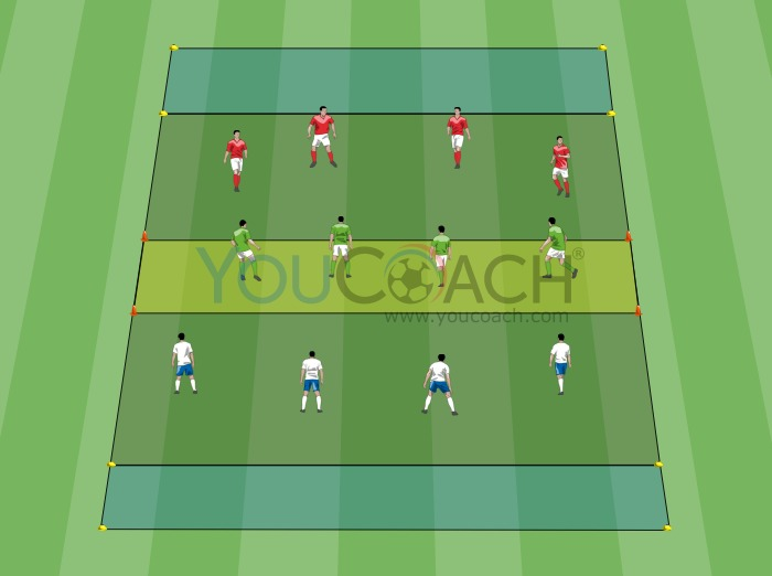 8 vs 4: width and transitions
