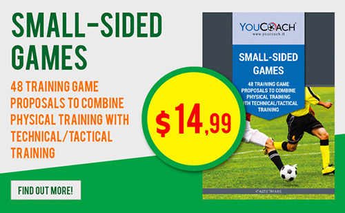 Small-Sided games